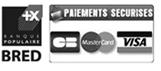 Carte bleue, Mastercard, Visa, Cheque, Virement